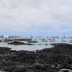 Puerto Ayora Docks