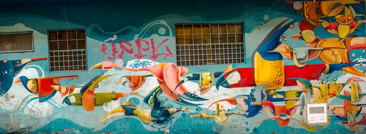 Colourful flying birds street art mural