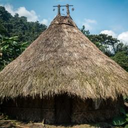 A kogi hut