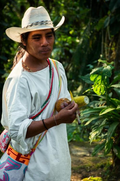 Alejandrino our wiwa guide