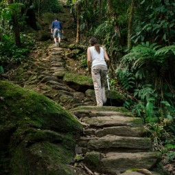 Climbing the stairs to the Lost City