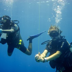 Hanging around during a safety stop at the end of a dive