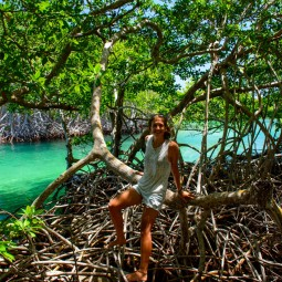 Climbing the mangrove roots